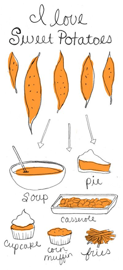 Sweet-potatoes-illustration